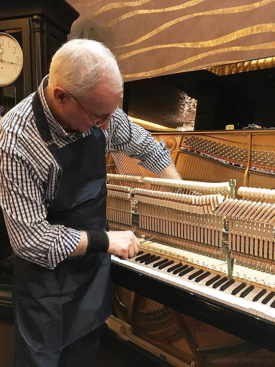 настройщик пианино (Москва и Московская область)