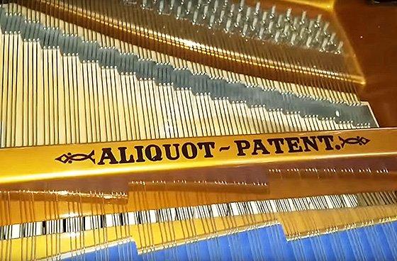 аликвотный рояль Блютнер